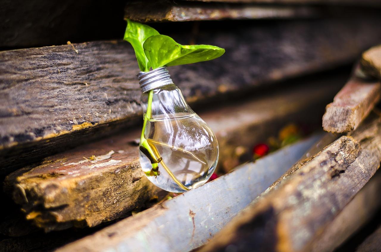 Reciclagem e meio ambiente - Reeciclar de volta ao ciclo!